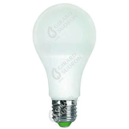 Standard A65 LED 330° 12W E27 2700K 1000Lm Opaca